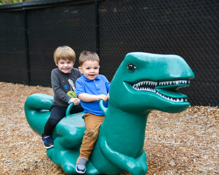 Two boys on a playground dinosaur